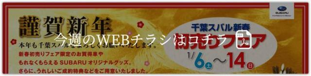 btn_web_large.jpg