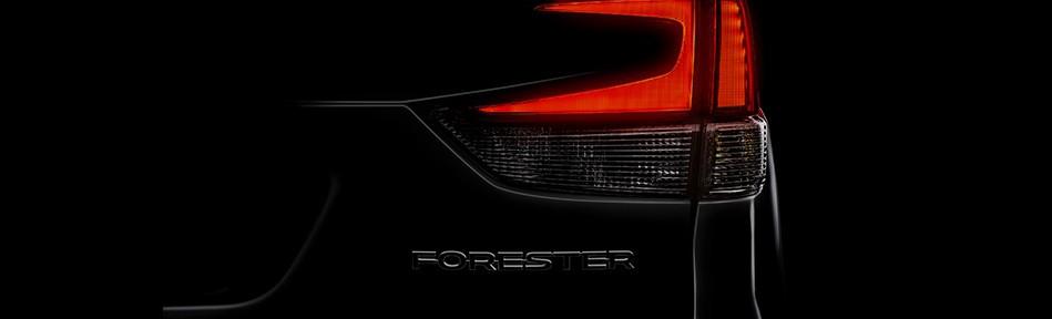 forester-back