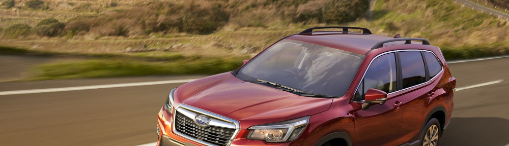 forester8