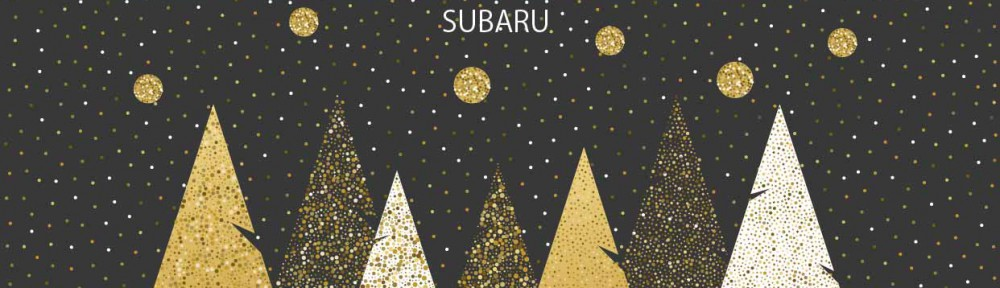 my-subaru_winter1