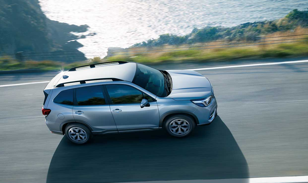 FORESTER_7